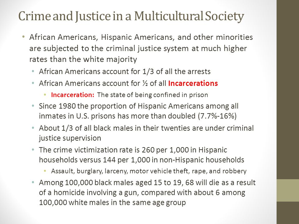 Crime and Justice in a Multicultural Society