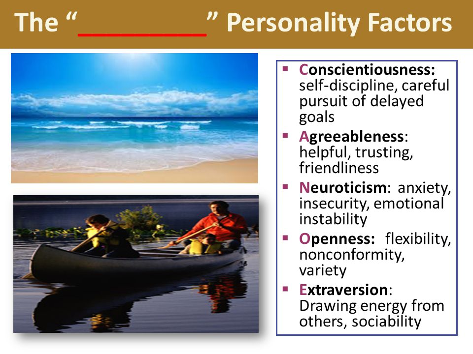The _________ Personality Factors