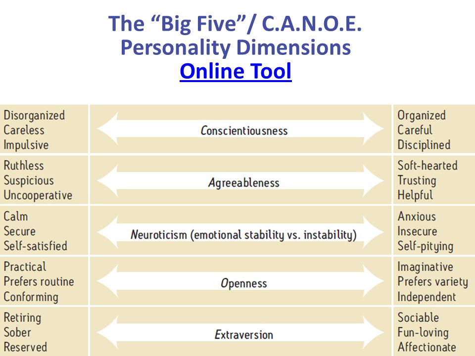 The Big Five / C.A.N.O.E. Personality Dimensions Online Tool