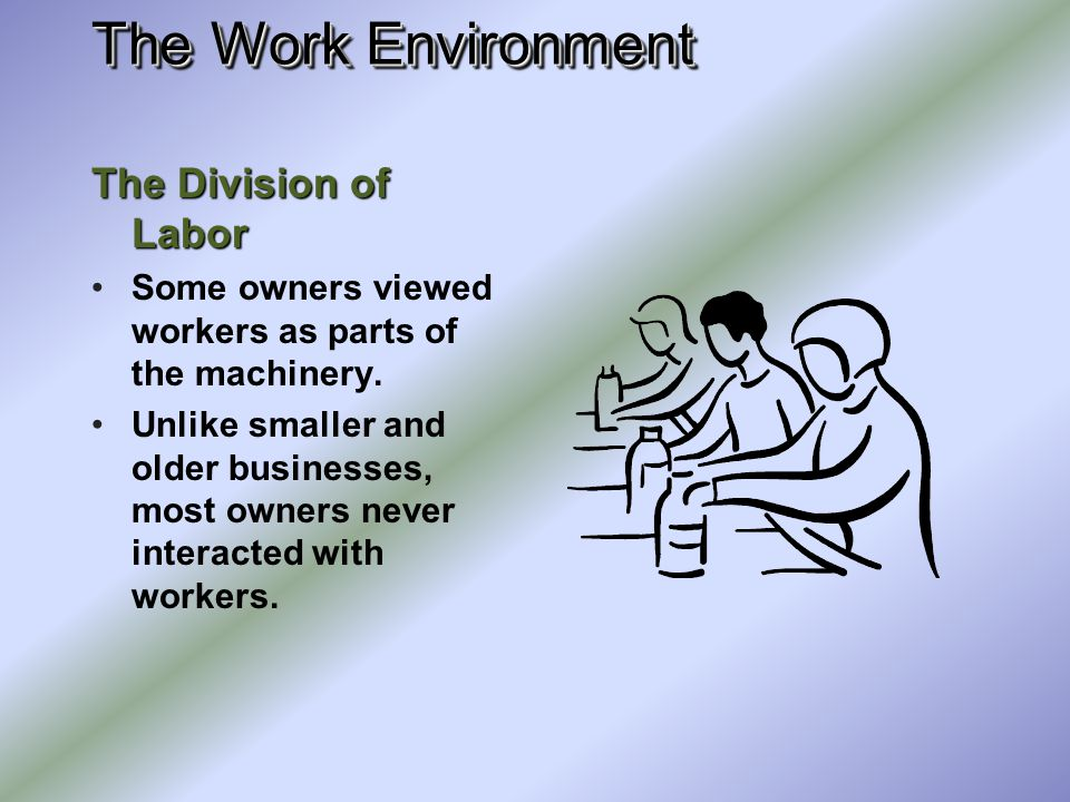 The Work Environment The Division of Labor