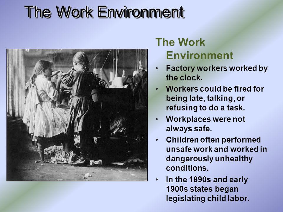 The Work Environment The Work Environment