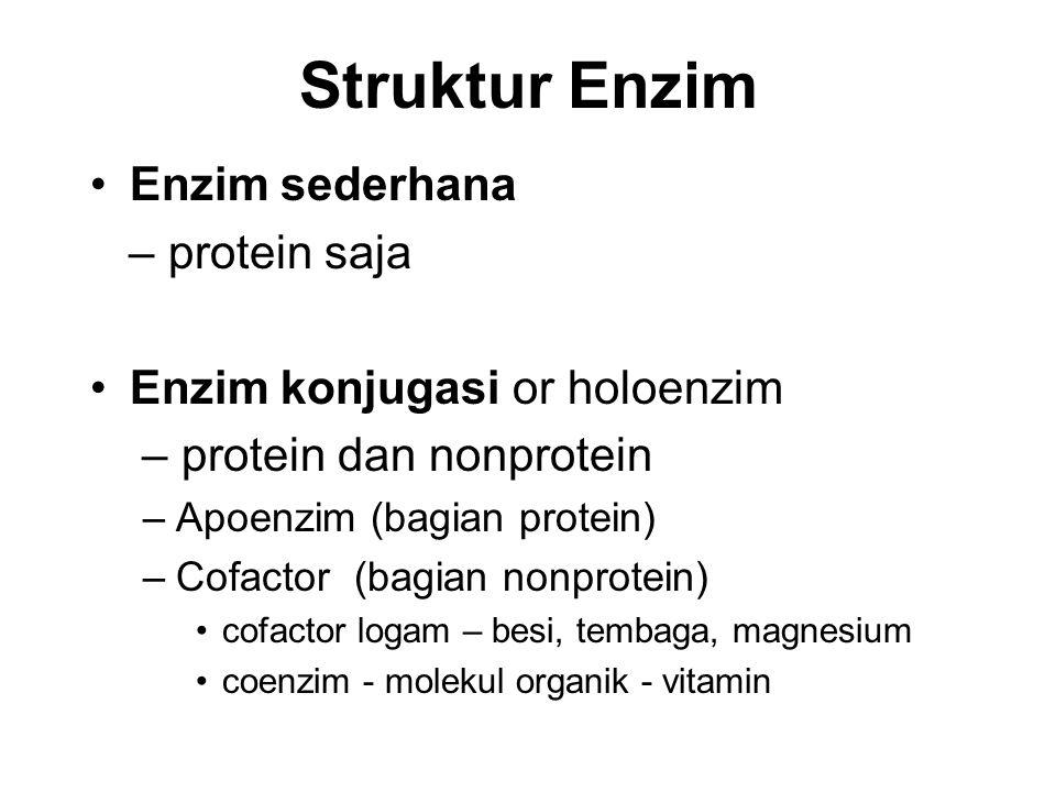 Struktur Enzim Enzim sederhana – protein saja