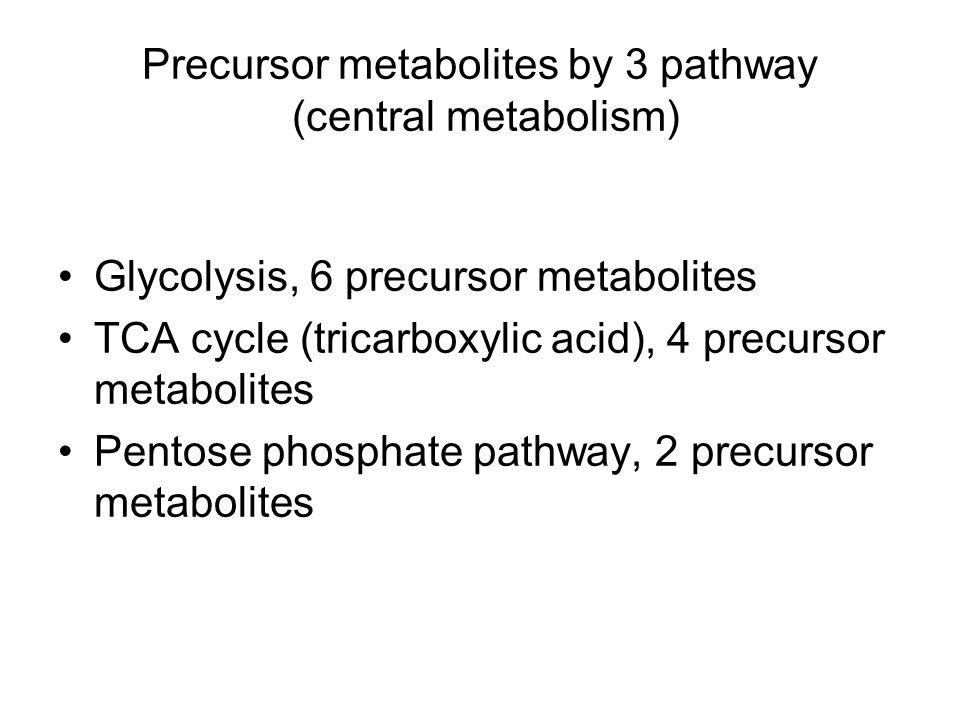 Precursor metabolites by 3 pathway (central metabolism)
