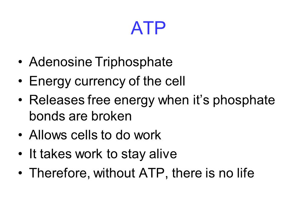 ATP Adenosine Triphosphate Energy currency of the cell
