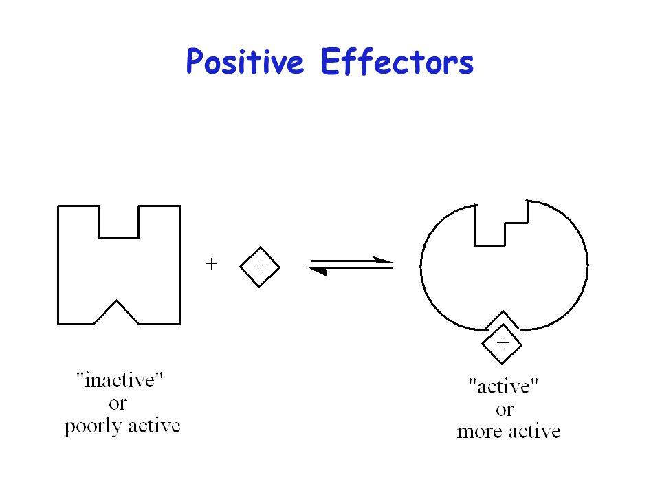 Positive Effectors