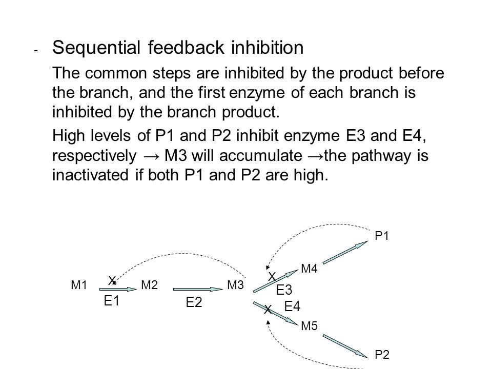 - Sequential feedback inhibition