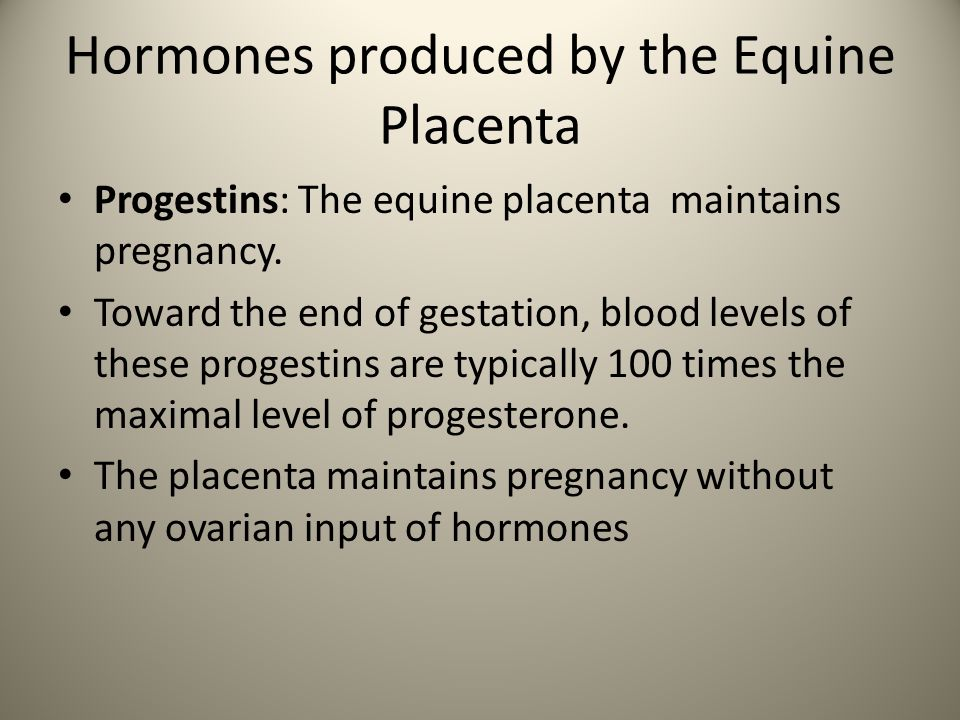 Hormones produced by the Equine Placenta