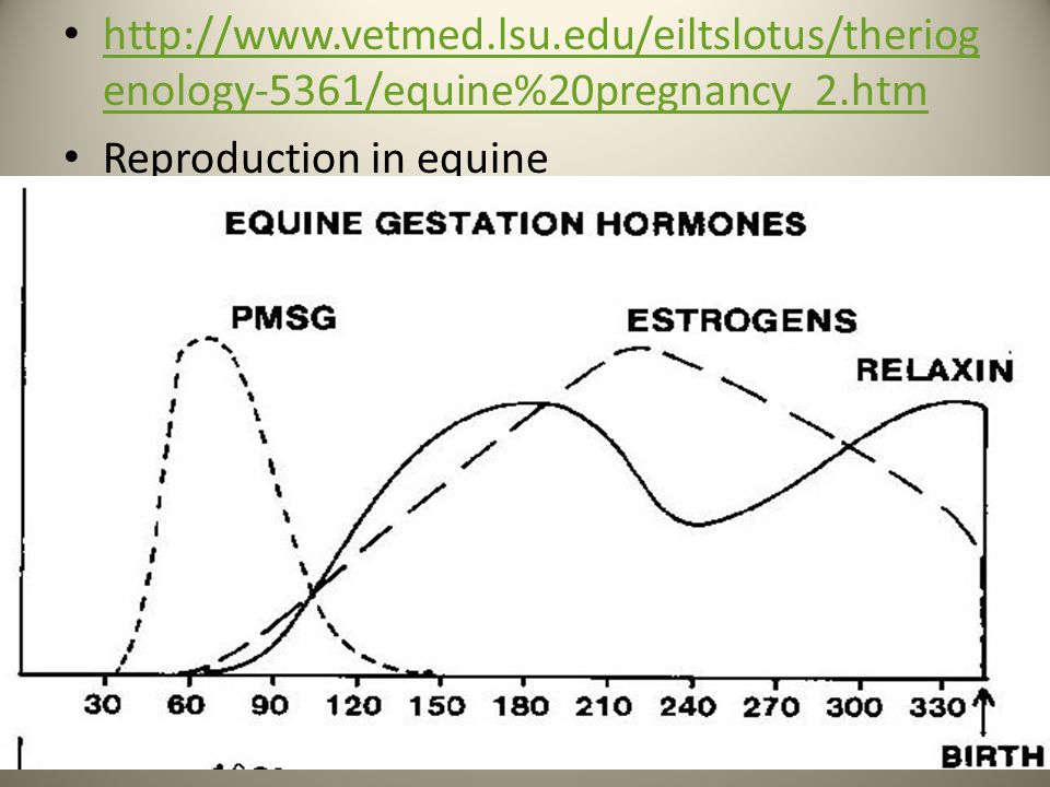 http://www.vetmed.lsu.edu/eiltslotus/theriogenology-5361/equine%20pregnancy_2.htm Reproduction in equine.