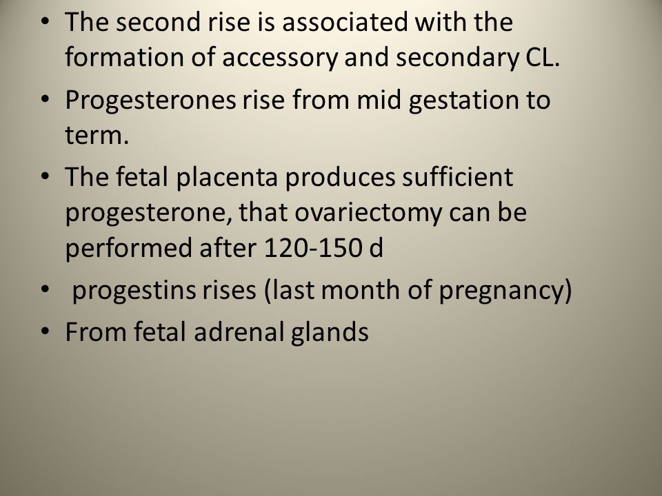 The second rise is associated with the formation of accessory and secondary CL.