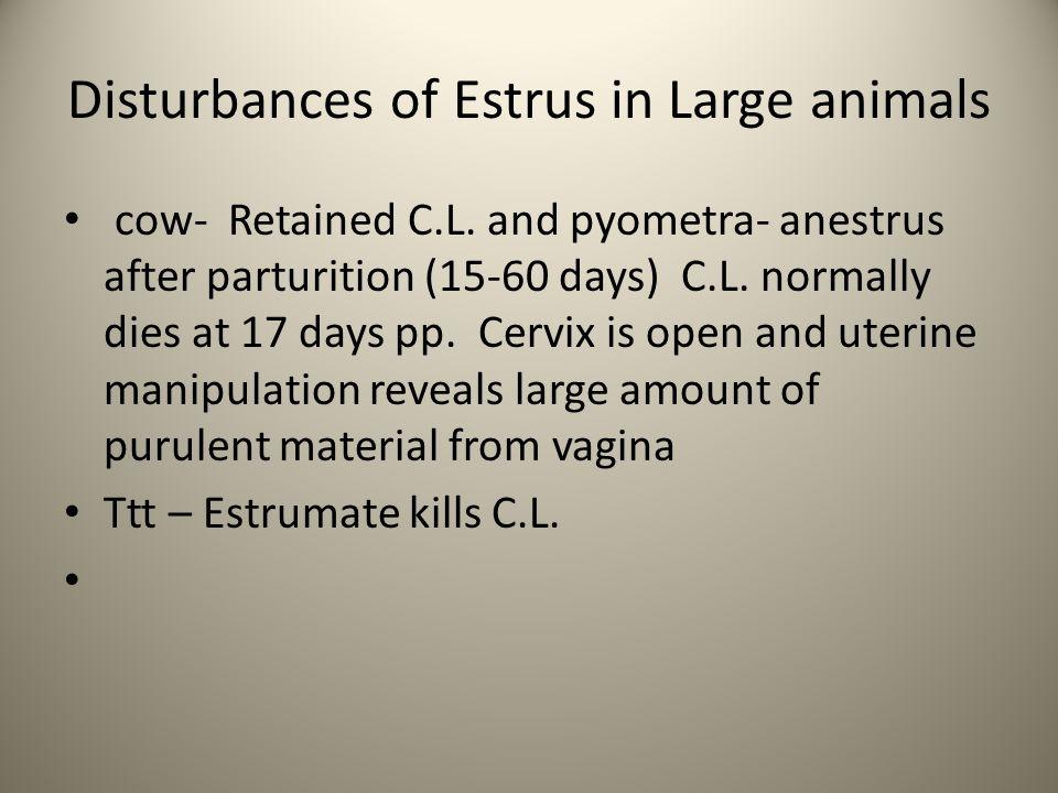 Disturbances of Estrus in Large animals