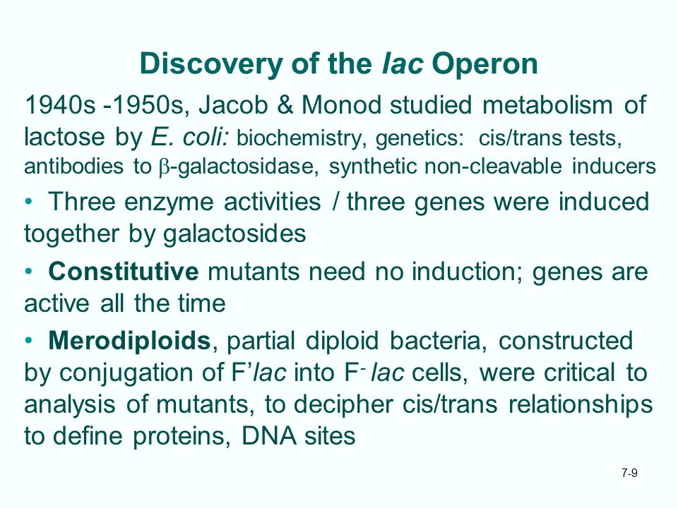 Discovery of the lac Operon