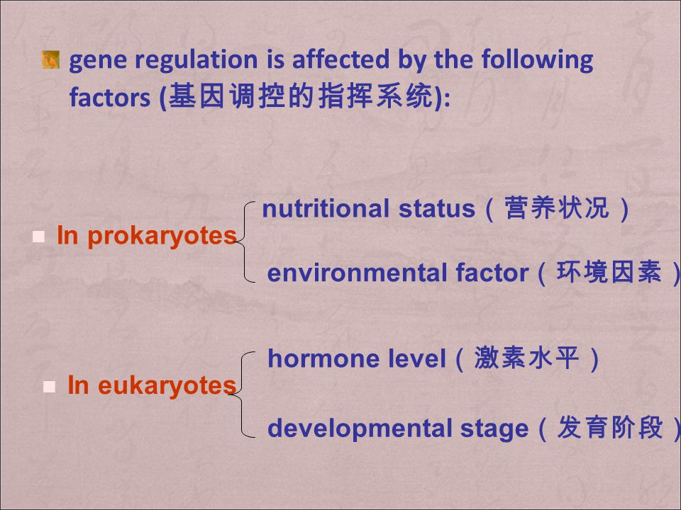 gene regulation is affected by the following factors (基因调控的指挥系统):