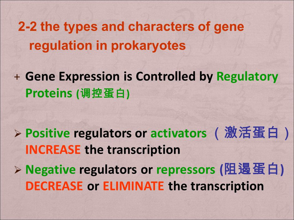 Gene Expression is Controlled by Regulatory Proteins (调控蛋白)