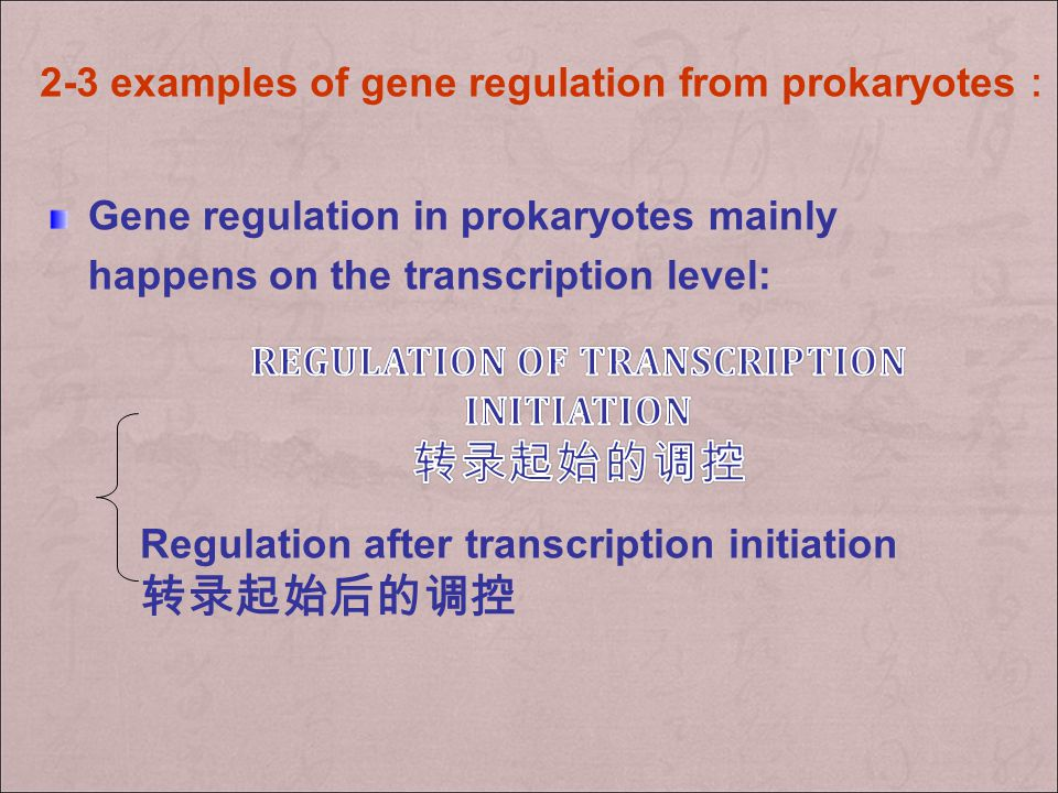 Regulation of transcription initiation 转录起始的调控