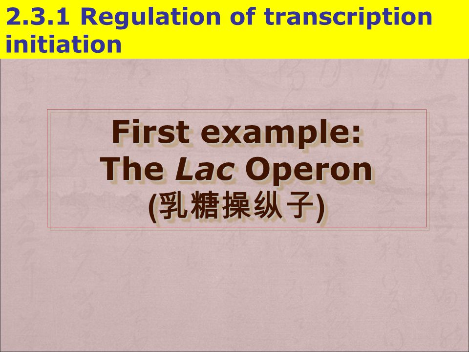 First example: The Lac Operon (乳糖操纵子)