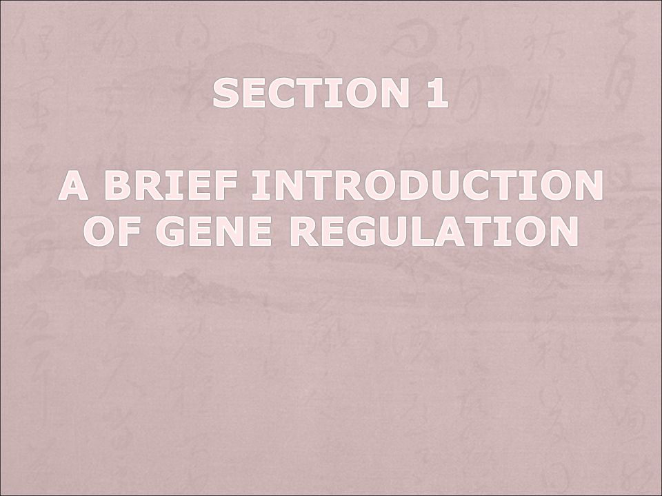 Section 1 A brief introduction of gene regulation