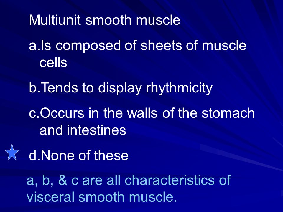 Multiunit smooth muscle