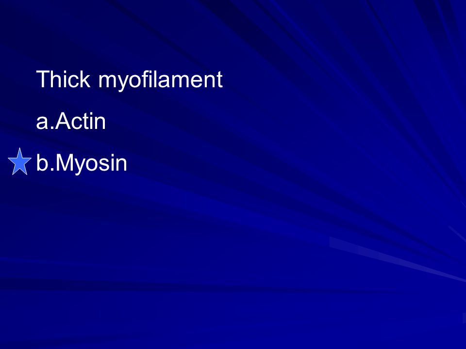 Thick myofilament Actin Myosin