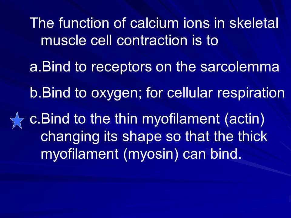 The function of calcium ions in skeletal muscle cell contraction is to