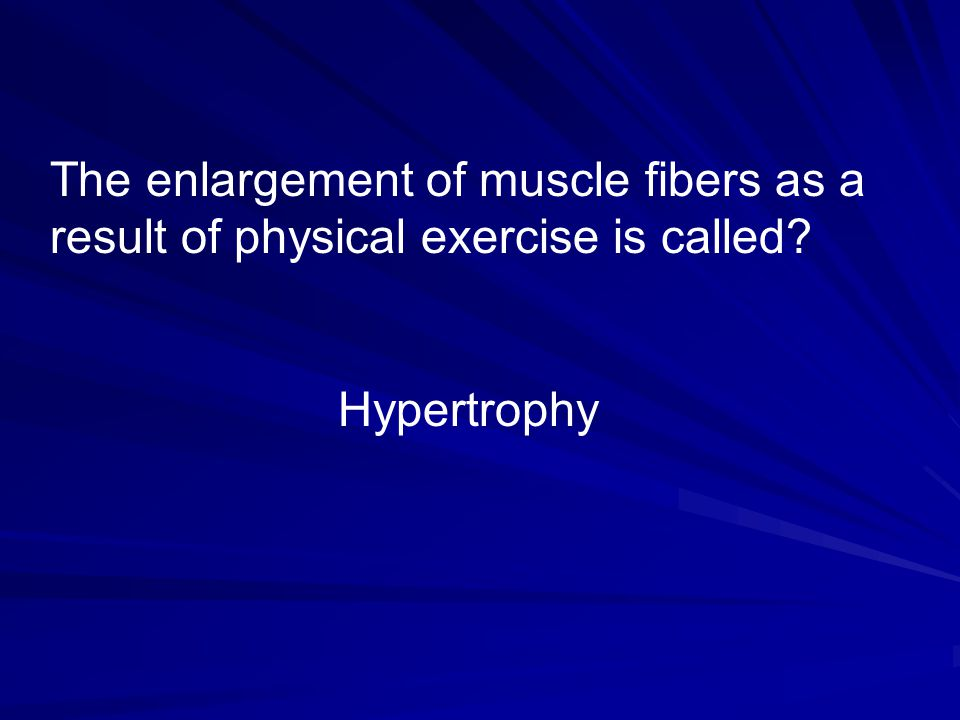 The enlargement of muscle fibers as a result of physical exercise is called