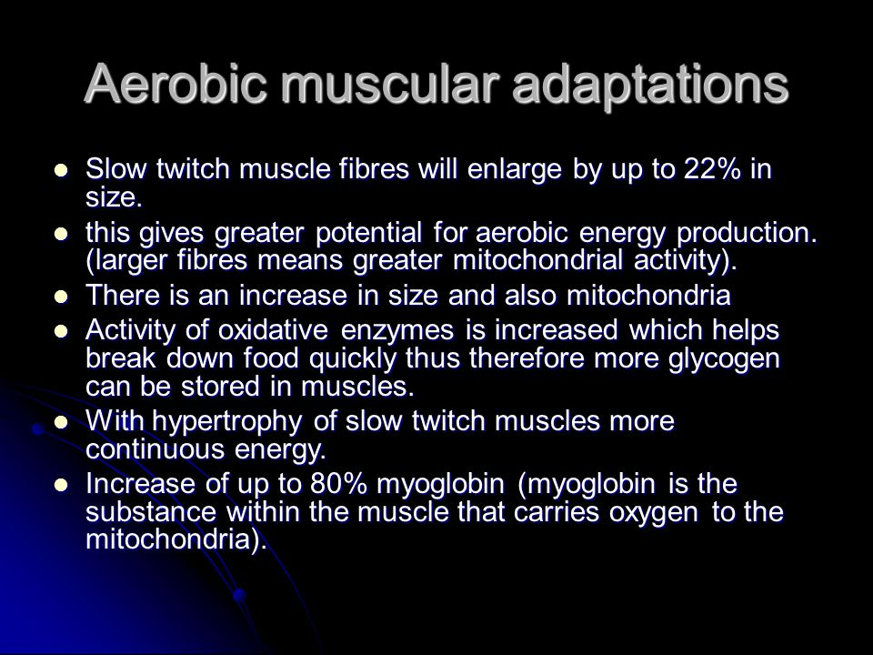 Aerobic muscular adaptations