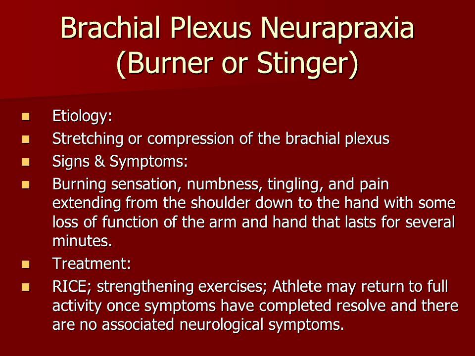 Brachial Plexus Neurapraxia (Burner or Stinger)
