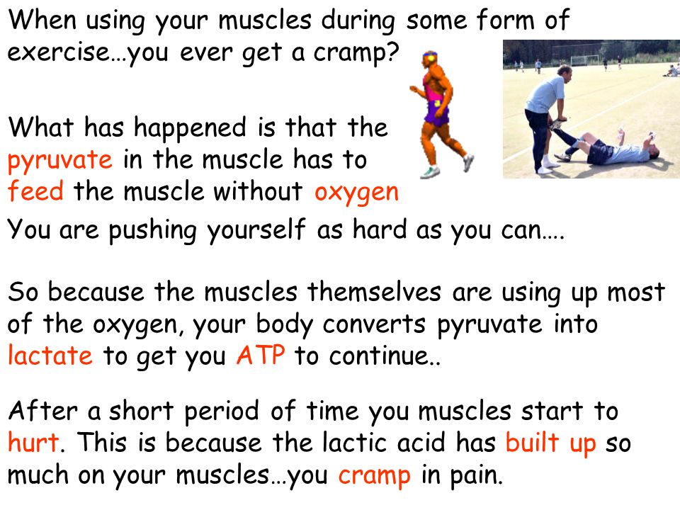 When using your muscles during some form of exercise…you ever get a cramp