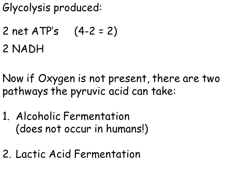 Glycolysis produced: 2 net ATP's (4-2 = 2) 2 NADH. Now if Oxygen is not present, there are two pathways the pyruvic acid can take: