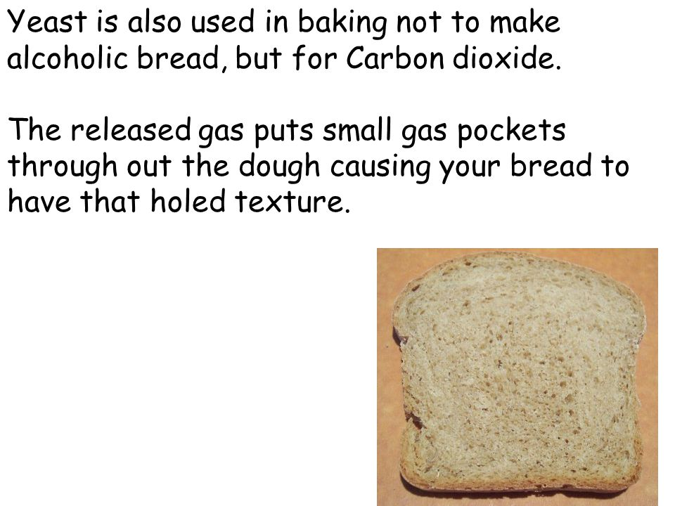 Yeast is also used in baking not to make alcoholic bread, but for Carbon dioxide.