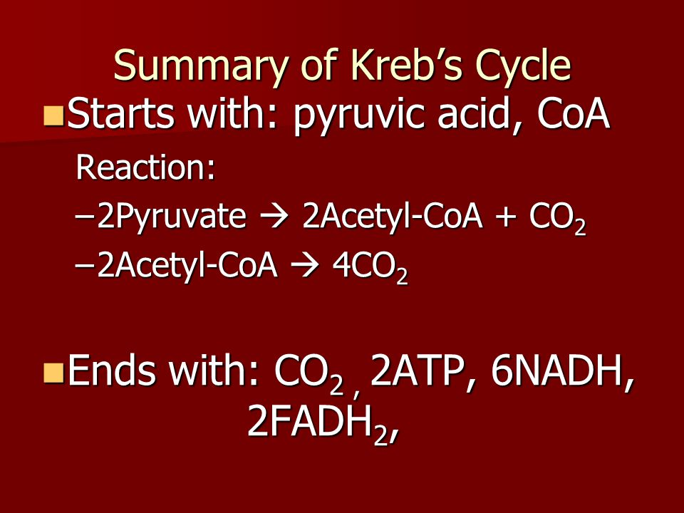 Summary of Kreb's Cycle