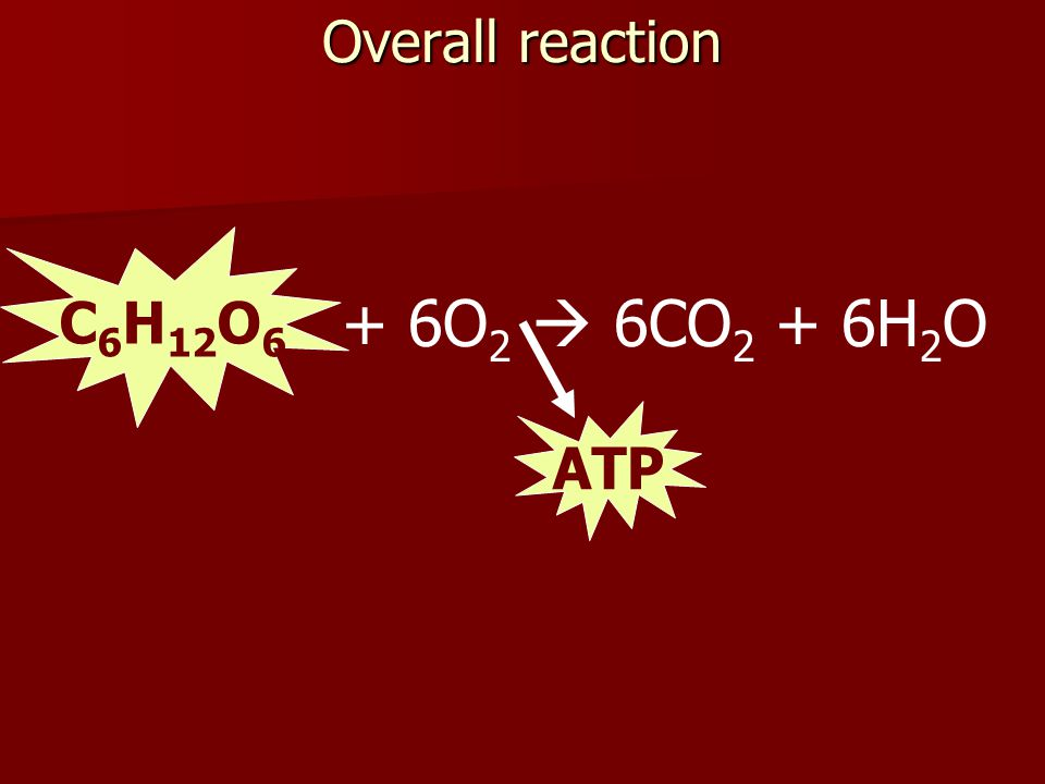 Overall reaction C6H12O6 + 6O2  6CO2 + 6H2O ATP