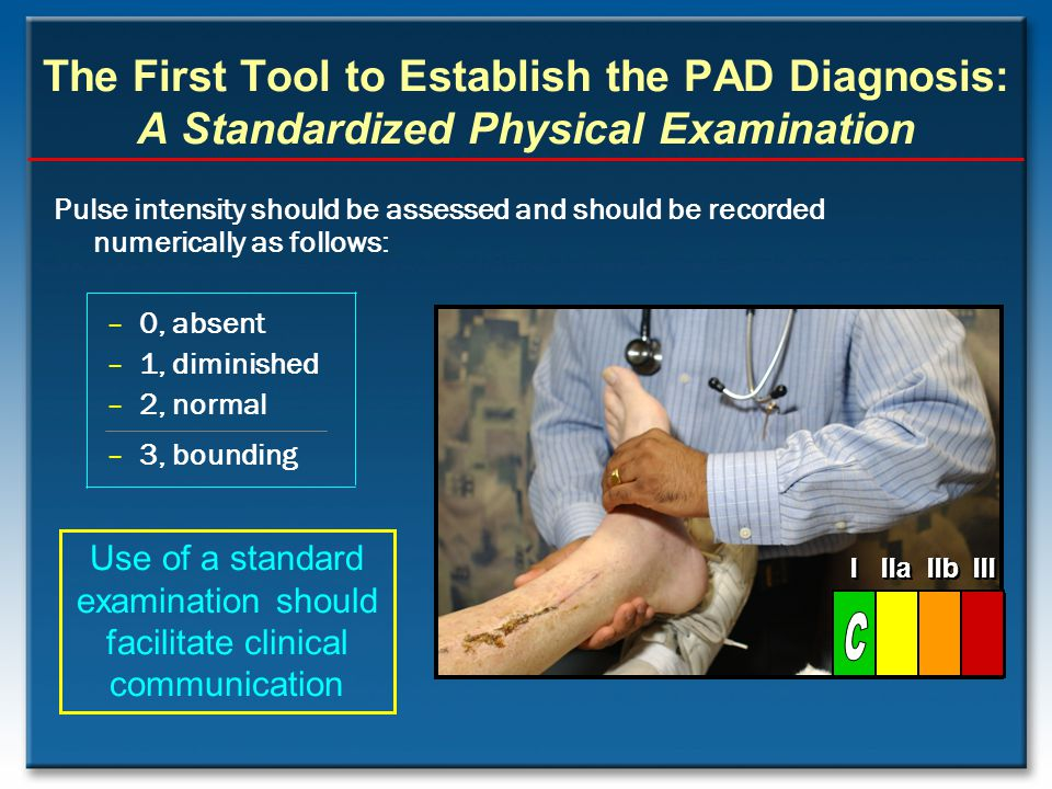 The First Tool to Establish the PAD Diagnosis: A Standardized Physical Examination