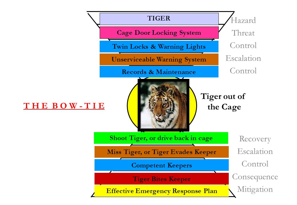 Hazard Threat Control Escalation Tiger out of the Cage
