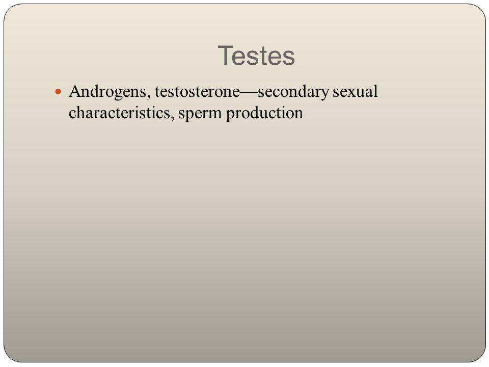 Testes Androgens, testosterone—secondary sexual characteristics, sperm production