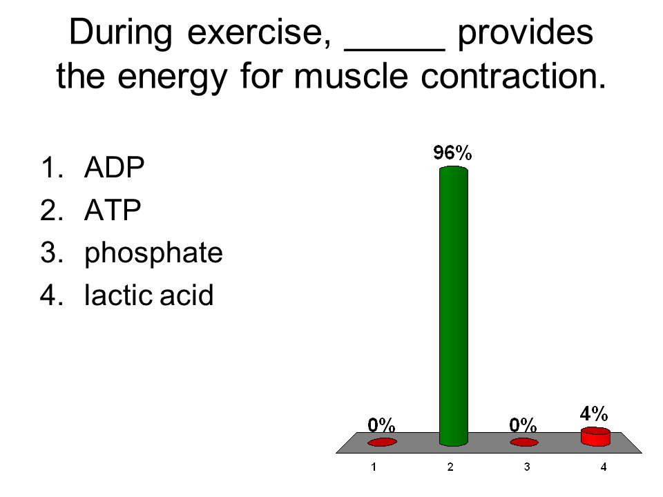 During exercise, _____ provides the energy for muscle contraction.