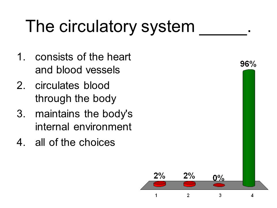 The circulatory system _____.