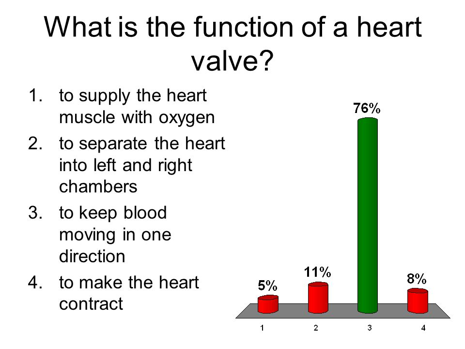 What is the function of a heart valve