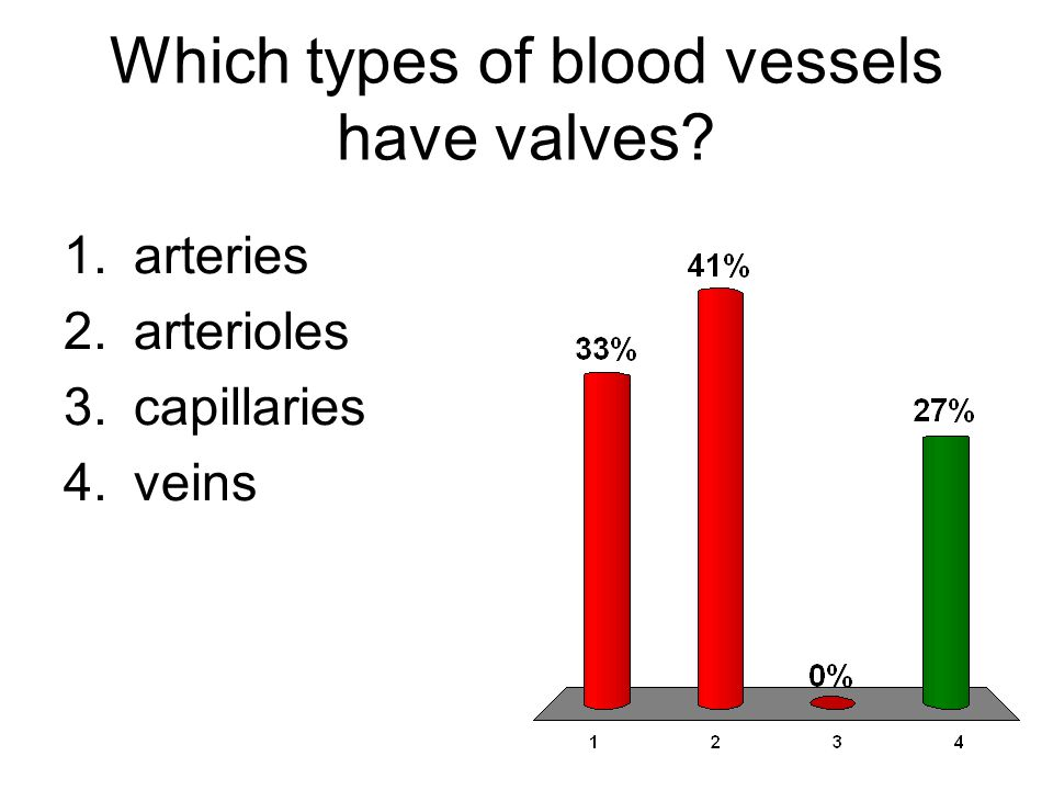 Which types of blood vessels have valves