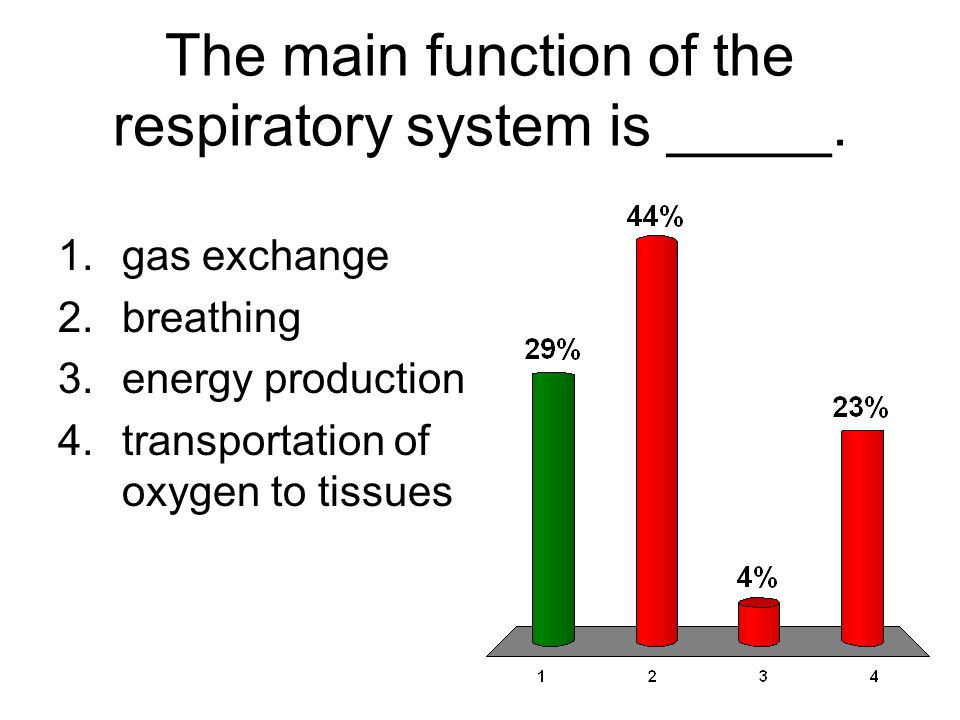 The main function of the respiratory system is _____.