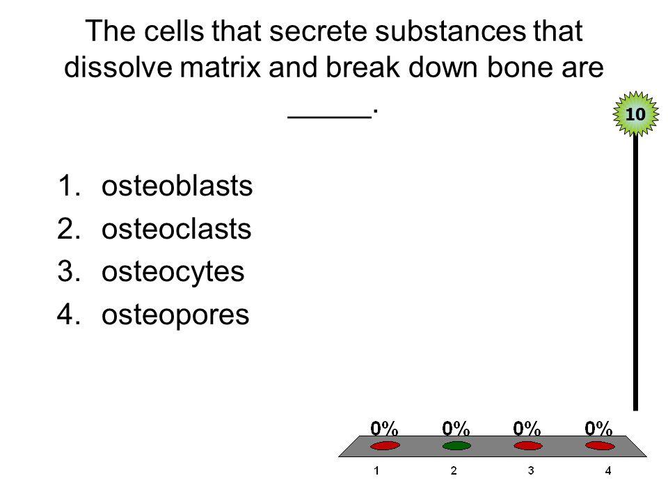 The cells that secrete substances that dissolve matrix and break down bone are _____.