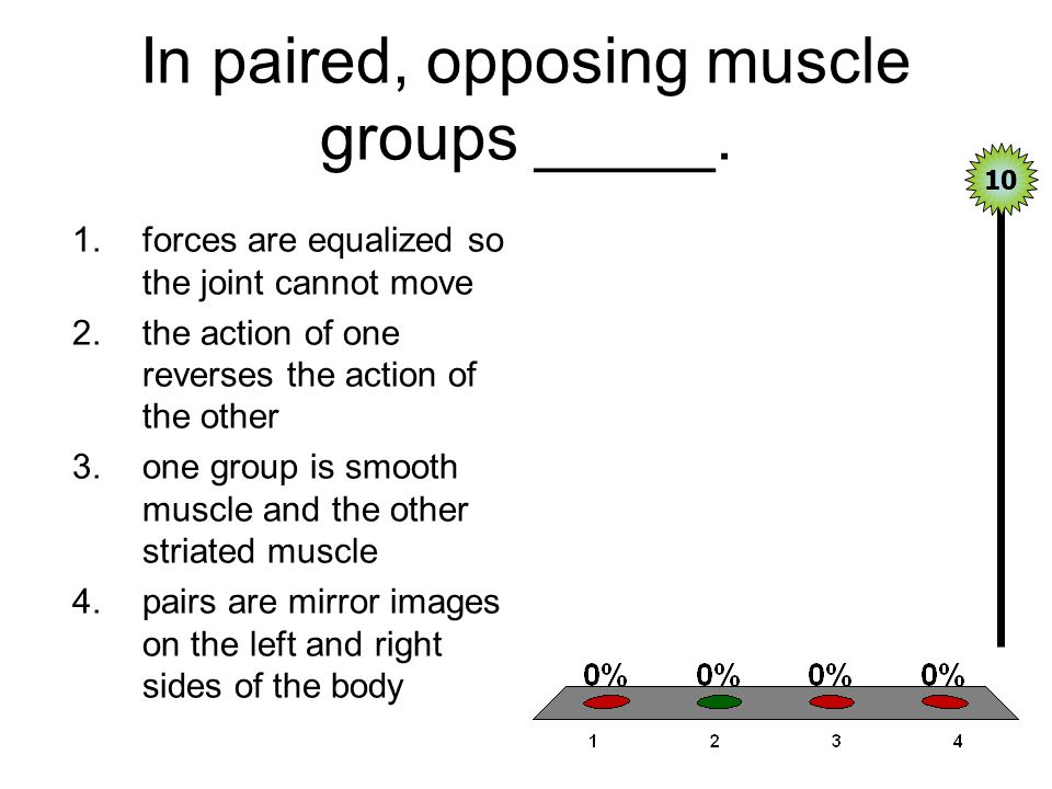 In paired, opposing muscle groups _____.
