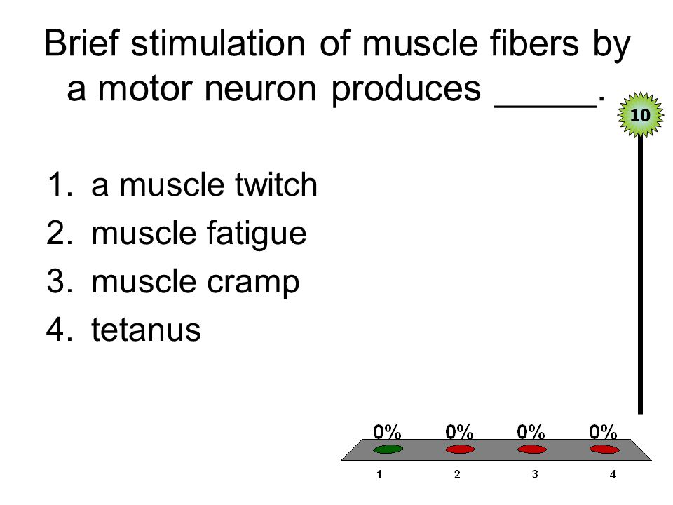 Brief stimulation of muscle fibers by a motor neuron produces _____.