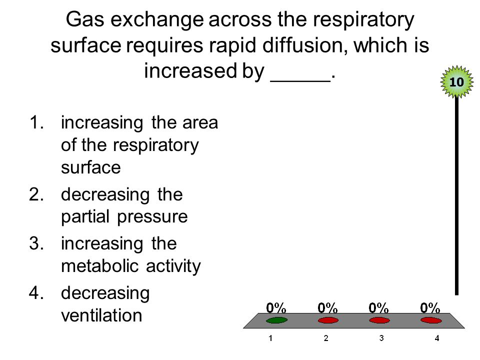 Gas exchange across the respiratory surface requires rapid diffusion, which is increased by _____.