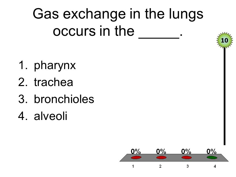 Gas exchange in the lungs occurs in the _____.