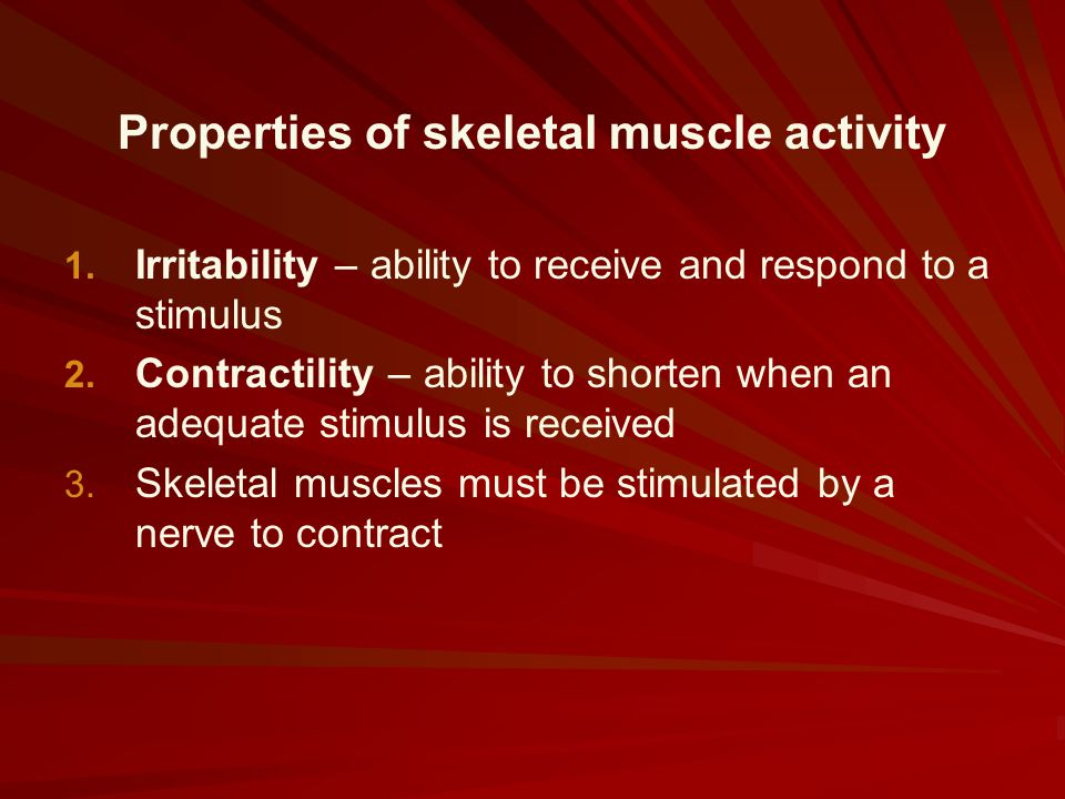 Properties of skeletal muscle activity