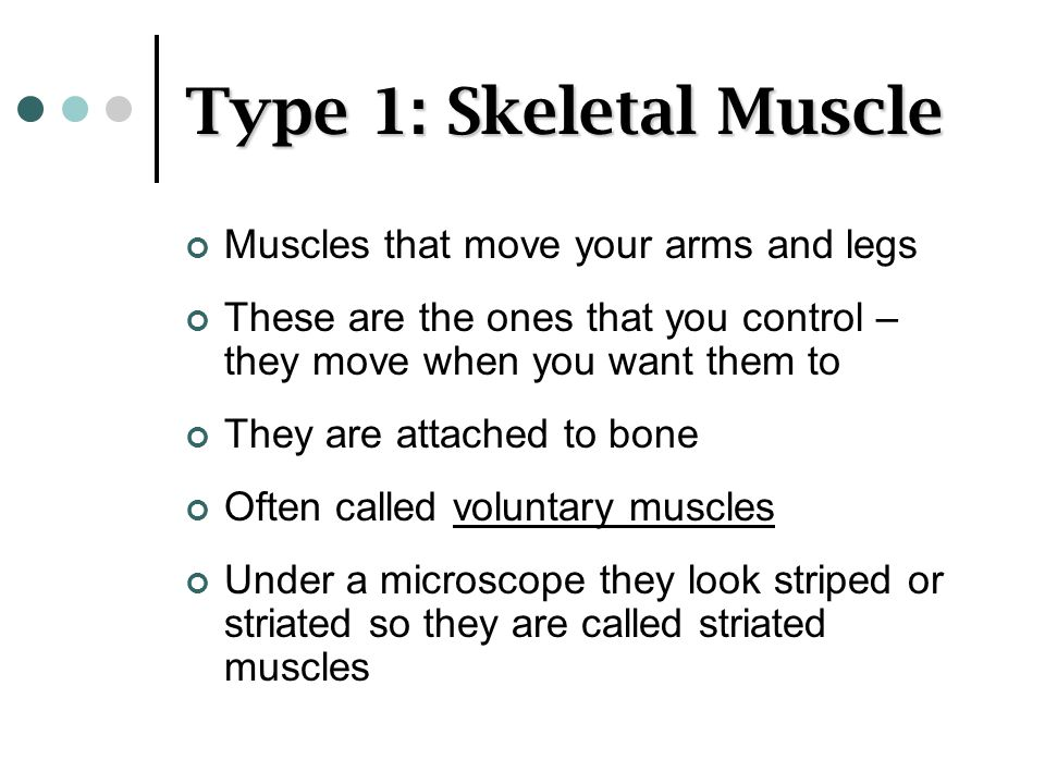 Type 1: Skeletal Muscle Muscles that move your arms and legs