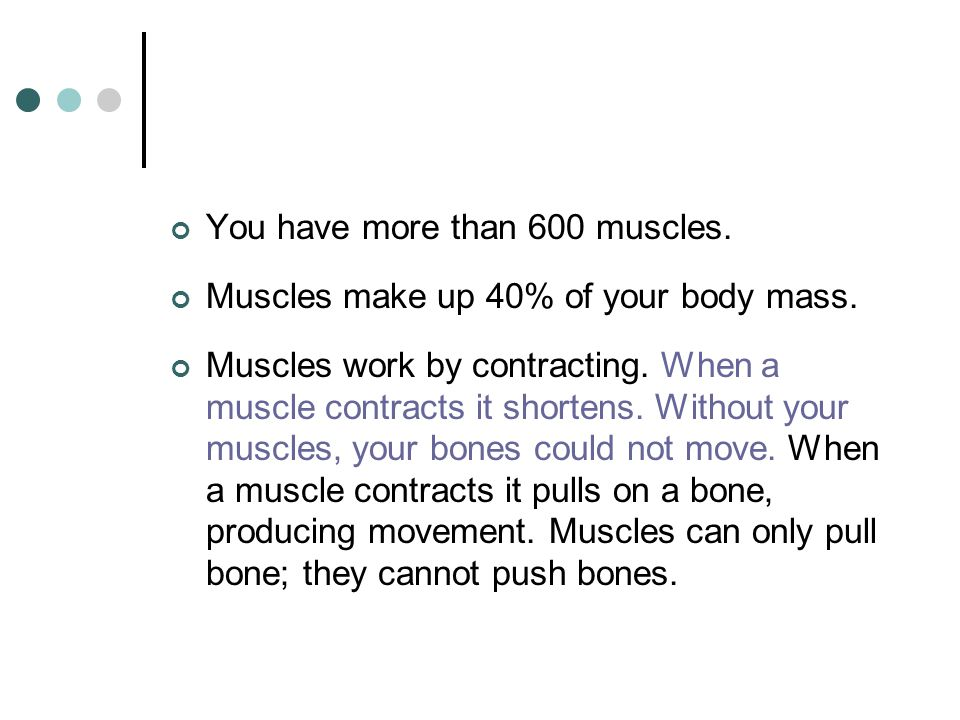 You have more than 600 muscles.