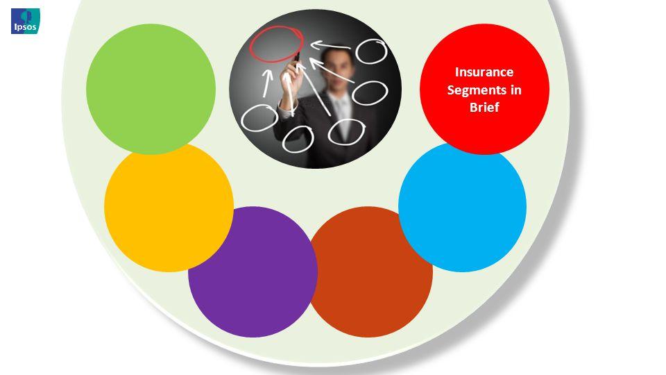 Insurance Segments in Brief