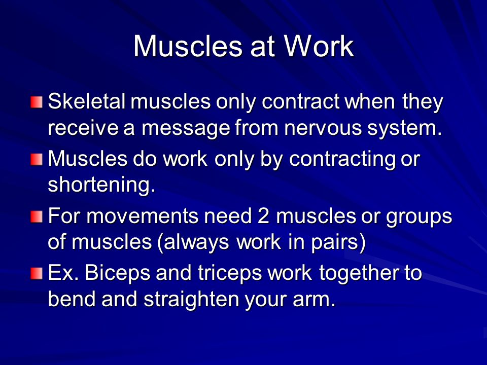 Muscles at Work Skeletal muscles only contract when they receive a message from nervous system. Muscles do work only by contracting or shortening.