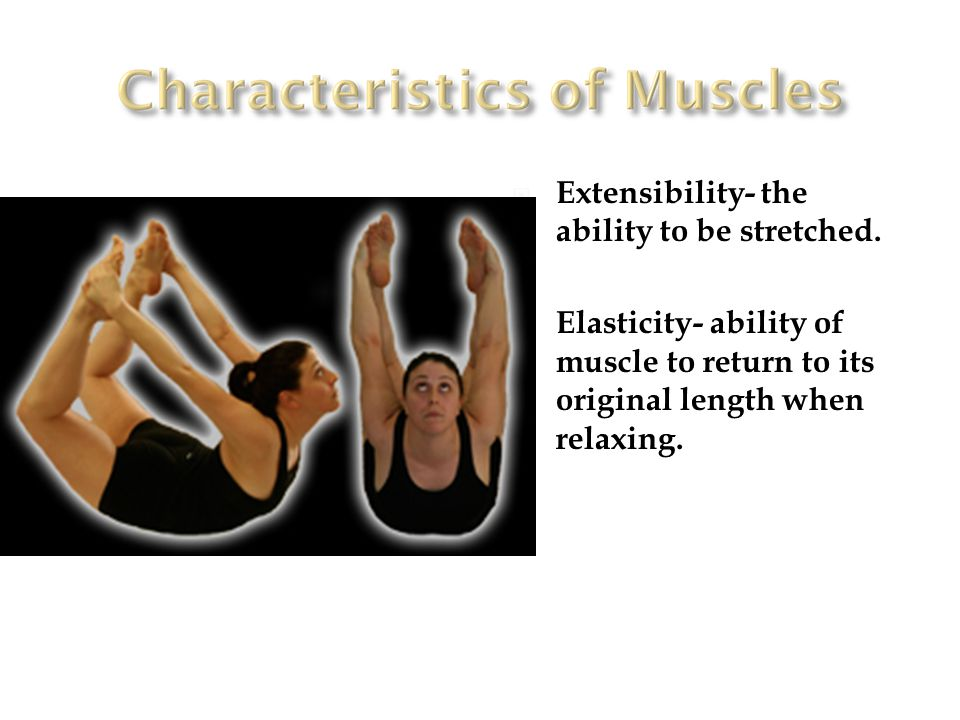 Extensibility- the ability to be stretched.